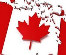 Tư vấn theo dõi tình trạng hồ sơ xin visa Canada chuẩn nhất