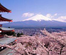 Visa Nhật Bản, xin visa đi du lịch Nhật Bản nhanh chóng và hiệu quả