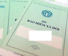 Có xin được visa du lịch Đài Loan khi không có các loại bảo hiểm yêu cầu không?